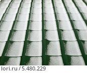 Черепичная крыша в снегу. Стоковое фото, фотограф Владимир Киликовский / Фотобанк Лори