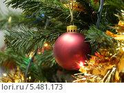 Красный шар на елкё среди гирлянд. Стоковое фото, фотограф Вячеслав Сапрыкин / Фотобанк Лори
