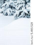 Заснеженные ели и сугробы снега. Стоковое фото, фотограф Михаил Коханчиков / Фотобанк Лори