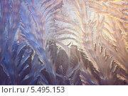 Купить «Морозные узоры», фото № 5495153, снято 18 января 2014 г. (c) Наталья Волкова / Фотобанк Лори