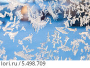 Купить «Изморозь, фон», фото № 5498709, снято 19 ноября 2017 г. (c) Tamara Sushko / Фотобанк Лори