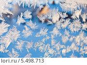 Купить «Фон, морозные узоры», фото № 5498713, снято 19 ноября 2017 г. (c) Tamara Sushko / Фотобанк Лори