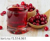 Купить «Сок из клюквы с ягодами на столе», фото № 5514961, снято 20 января 2014 г. (c) Tatjana Baibakova / Фотобанк Лори
