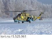 Купить «Армейский ударный вертолёт Ми-24», эксклюзивное фото № 5525961, снято 24 января 2014 г. (c) Александр Тарасенков / Фотобанк Лори