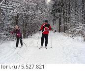Лыжники в зимнем лесу в пасмурную снежную погоду (2012 год). Редакционное фото, фотограф lana1501 / Фотобанк Лори
