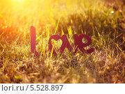 """Слово """"Любовь"""" на траве в лучах закатного солнца. Стоковое фото, фотограф Елена Ефимова / Фотобанк Лори"""