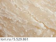 Текстура твёрдого сыра пармиджано-реджано (parmigiano reggiano), Италия. Стоковое фото, фотограф Марина Гуменюк / Фотобанк Лори