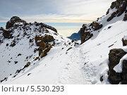 Купить «Гора Килиманджаро ранним утром, Танзания», фото № 5530293, снято 29 января 2008 г. (c) Знаменский Олег / Фотобанк Лори