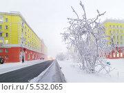 Купить «Центральная улица Норильска зимой», фото № 5532065, снято 29 января 2014 г. (c) Андрей Радченко / Фотобанк Лори