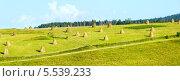 Летний пейзаж, стога сена в поле, Карпаты, Украина. Стоковое фото, фотограф Юрий Брыкайло / Фотобанк Лори