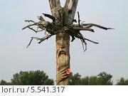 Купить «Идол деревянный», эксклюзивное фото № 5541317, снято 28 июня 2013 г. (c) Анатолий Матвейчук / Фотобанк Лори