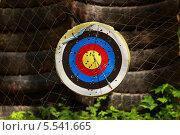 Цель для стрельбы стрелами. Стоковое фото, фотограф Семен Трофимов / Фотобанк Лори