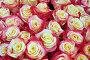 Желто-розовые розы, фон, фото № 5542365, снято 4 сентября 2012 г. (c) Losevsky Pavel / Фотобанк Лори