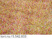 Купить «Стильный ковер из множества разноцветных веревочек», фото № 5542833, снято 1 августа 2012 г. (c) Losevsky Pavel / Фотобанк Лори