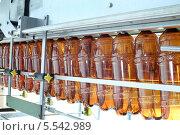 Купить «Пустые ПЭТ-бутылки на конвейере завода», фото № 5542989, снято 16 мая 2012 г. (c) Losevsky Pavel / Фотобанк Лори