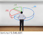 Бизнесмен стоит перед стеной с круговой цветной диаграммой. Стоковое фото, фотограф Виталий Китайко / Фотобанк Лори