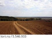 Купить «Дорога в поле», фото № 5546933, снято 3 мая 2013 г. (c) Бяков Вячеслав / Фотобанк Лори