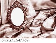 Купить «Красивая винтажная рамка на драпировке», фото № 5547469, снято 7 февраля 2012 г. (c) Типляшина Евгения / Фотобанк Лори