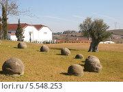 Сельский пейзаж с камнями и старой оливой в Португалии (2012 год). Стоковое фото, фотограф Дмитрий Булатов / Фотобанк Лори