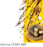 Купить «Натюрморт на тему пасхи», фото № 5551469, снято 23 марта 2013 г. (c) Наталия Кленова / Фотобанк Лори