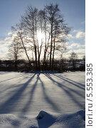 Зимний пейзаж с контровым солнцем. Стоковое фото, фотограф Онипенко Михаил / Фотобанк Лори