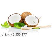 Купить «Кокос на белом фоне», фото № 5555177, снято 15 декабря 2013 г. (c) Виталий Радунцев / Фотобанк Лори