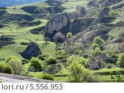 Весна в горах Северной Осетии. Стоковое фото, фотограф Daria / Фотобанк Лори
