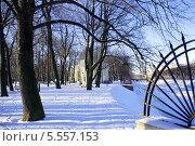 Городской парк зимой. Стоковое фото, фотограф Марина Валентиновна Фор / Фотобанк Лори
