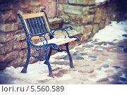 Купить «Старая кованая скамейка», фото № 5560589, снято 26 января 2014 г. (c) Вероника Галкина / Фотобанк Лори