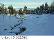 Купить «Зимний ручей. Пиринские горы, курорт Банско, Болгария», фото № 5562593, снято 1 февраля 2012 г. (c) ZitsArt / Фотобанк Лори