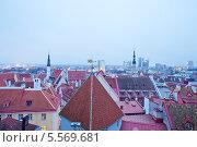 Купить «Вид на Старый город в Таллине, Эстония», эксклюзивное фото № 5569681, снято 24 августа 2019 г. (c) Литвяк Игорь / Фотобанк Лори