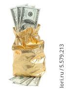 Купить «Доллары в золотистом мешке», фото № 5579213, снято 9 февраля 2014 г. (c) Алексей Карпов / Фотобанк Лори