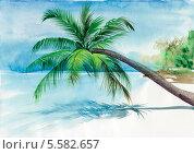 Пальма нависает над пляжем с белым песком. Стоковая иллюстрация, иллюстратор Вероника Суровцева / Фотобанк Лори