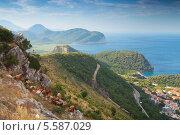 Купить «Стадо коз в горах на побережье Черногории», фото № 5587029, снято 6 июля 2013 г. (c) EugeneSergeev / Фотобанк Лори