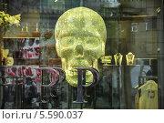 Купить «Огромный сверкающий череп в витрине магазина Philipp Plein на Никольской улице», эксклюзивное фото № 5590037, снято 14 февраля 2014 г. (c) Алёшина Оксана / Фотобанк Лори