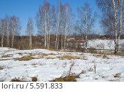 Купить «Весенний сельский пейзаж», эксклюзивное фото № 5591833, снято 16 апреля 2013 г. (c) Елена Коромыслова / Фотобанк Лори