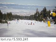 Купить «Горнолыжный учебный склон. Поселок Банско, Болгария», фото № 5593241, снято 1 февраля 2012 г. (c) ZitsArt / Фотобанк Лори