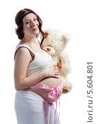 Купить «Молодая красивая беременная женщина с плюшевым мишкой и розовой лентой на животе», фото № 5604801, снято 8 февраля 2014 г. (c) Владимир Мельников / Фотобанк Лори