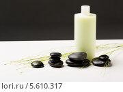Купить «Зеленые побеги, черные камни и бутылочка шампуня», фото № 5610317, снято 5 мая 2013 г. (c) Syda Productions / Фотобанк Лори