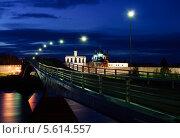 Купить «Вид на звонницу и Софийский собор ночью, Великий Новгород», фото № 5614557, снято 18 июня 2019 г. (c) Зезелина Марина / Фотобанк Лори