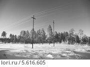 Купить «Энергетический пейзаж. Зима. Строительство высоковольтной воздушной линии электропередач на месторождение в Западной Сибири», эксклюзивное фото № 5616605, снято 4 ноября 2012 г. (c) Валерий Акулич / Фотобанк Лори