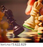 Купить «Шахматы. Рука переставляет фигуру на доске», фото № 5622829, снято 22 февраля 2014 г. (c) Сергей Петерман / Фотобанк Лори