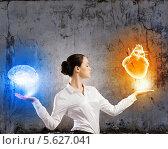 Купить «Бизнесвумен взвешивает в руках мозг и сердце.», фото № 5627041, снято 17 сентября 2018 г. (c) Sergey Nivens / Фотобанк Лори