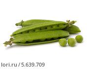 Купить «Стручки спелого зеленого горошка на белом фоне», фото № 5639709, снято 4 июля 2011 г. (c) Natalja Stotika / Фотобанк Лори