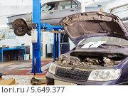 Купить «Ремонт автомобилей в автосервисе», фото № 5649377, снято 21 августа 2012 г. (c) Losevsky Pavel / Фотобанк Лори