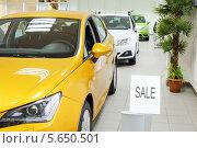 Купить «Распродажа автомобилей», фото № 5650501, снято 28 августа 2012 г. (c) Losevsky Pavel / Фотобанк Лори