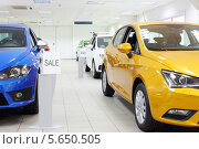 Купить «Новые машины на распродаже автомобилей в автосалоне», фото № 5650505, снято 28 августа 2012 г. (c) Losevsky Pavel / Фотобанк Лори