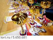 Множество наград, дипломов, кубков и медалей, фото № 5650681, снято 24 марта 2012 г. (c) Losevsky Pavel / Фотобанк Лори