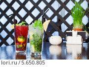Купить «Два коктейля со льдом на столе ресторана», фото № 5650805, снято 31 марта 2012 г. (c) Losevsky Pavel / Фотобанк Лори