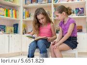 Купить «Две девочки внимательно читают книгу в детской библиотеке на фоне книжных полок», фото № 5651829, снято 18 марта 2012 г. (c) Losevsky Pavel / Фотобанк Лори